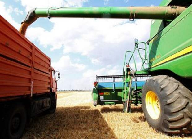 В США предрекли России один из лучших урожаев пшеницы в истории
