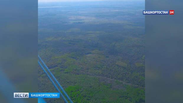 Природные пожары: в Башкирии организовано авиационное патрулирование лесов