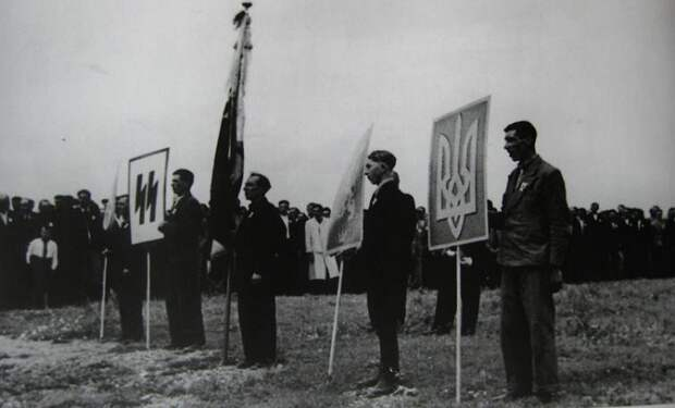 Кто попадал в ряды «Галичины», как фашисты относились к «коллегам» и другие факты об украинском СС