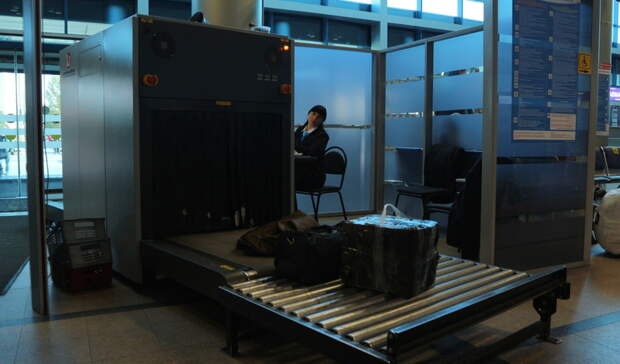Швырявший вещи пассажиров сотрудник Кольцово уволился