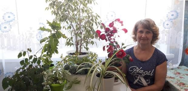 Воспитатель из Чкаловска Любовь Ершова поделилась секретами выращивания комнатных растений