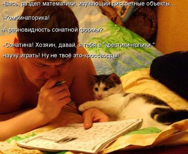 1450431441_kotomatrica-20