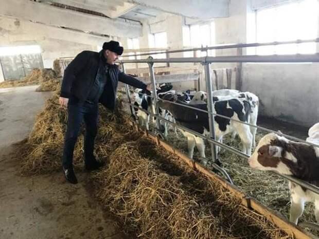 Замглавы Минсельхозпрода Дагестана ознакомился с работой ряда сельхозпредприятий Кизлярского района