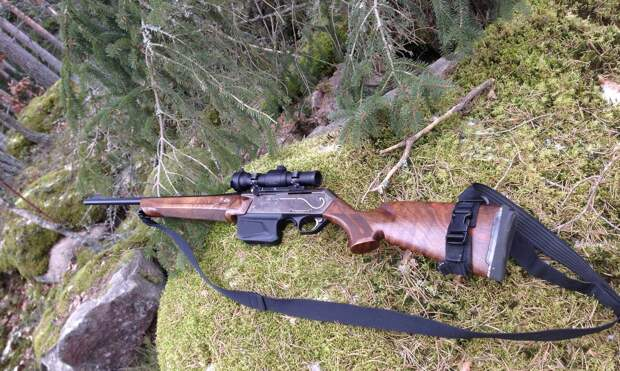 Незаконная охота на лося может обойтись двум ижевчанам в полмиллиона рублей