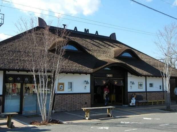 Киши — это последняя, 14-я остановка на линии длиной в 14,3 км, соединяющей сельские районы с региональным центром Вакаяма в мире, животные железная дорога, кошка, люди, спасение, япония