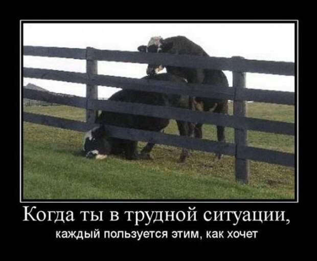 1442688625_11-svezhie-demotivatory_xaxa-net.ru