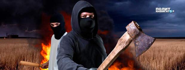 На Украине банды отнимают у фермеров землю и урожай