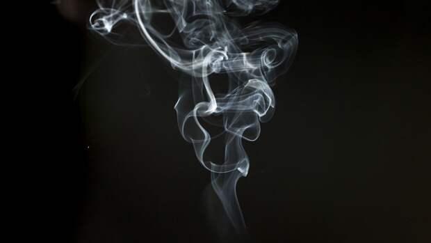Требования к упаковке сигарет планируют изменить в России