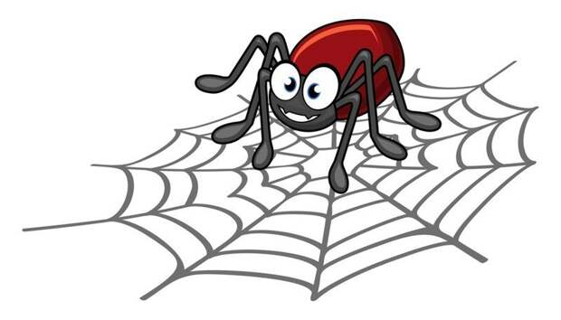 Почему убить паука плохая примета? Весты, дом, достаток, паук, паутина, поверье, почемучка, примета