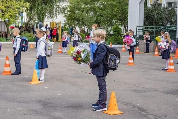 Некоторые школы все же вынуждены были перейти на дистанционное обучение