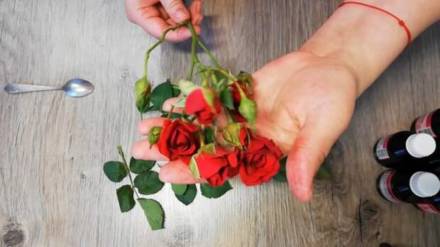 Вечная роза в глицерине: очень красивый декор своими руками