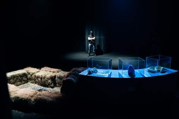 Экстрим в темноте: Сергей Светлаков стал ведущим нового шоу на СТС