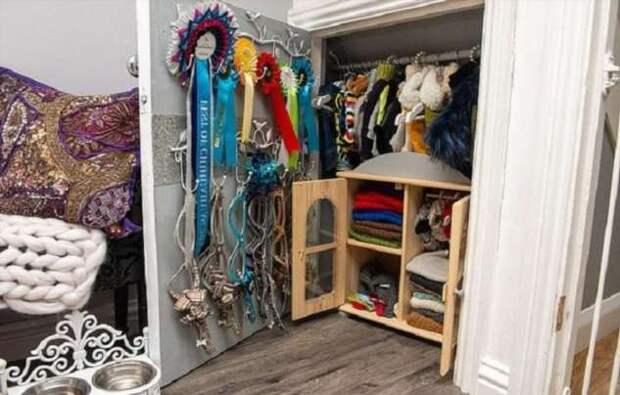 Состояние на дизайнерскую одежду для чихуахуа