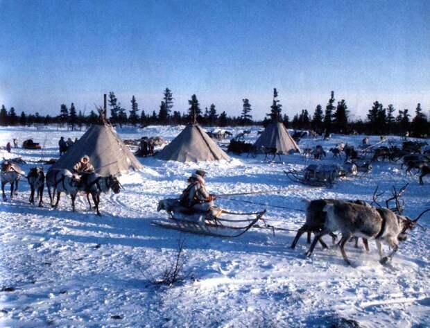 Северные традиции