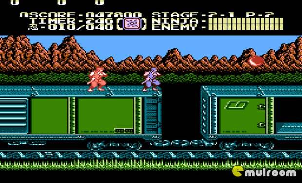 Ninja Gaiden. 90-е годы, Денди 8 бит, любимые игры