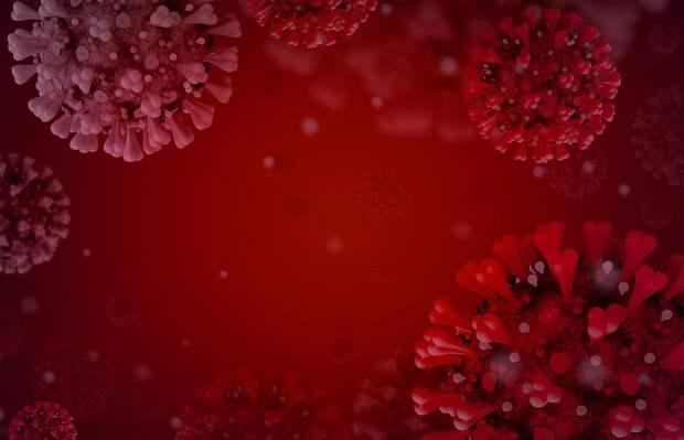Еще 11 человек заболели коронавирусом в Крыму, — Аксенов