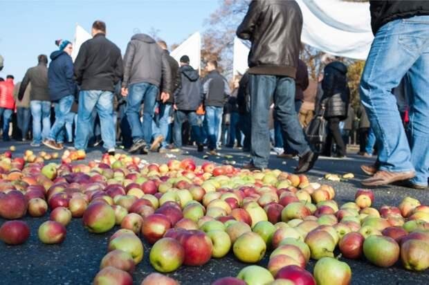 Колоссальные убытки заставляют польских фермеров мечтать о российском потребителе