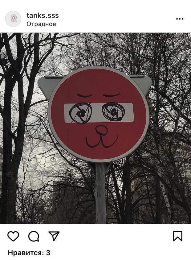 Фото дня: в Отрадном хулиганы превратили дорожный знак в кота