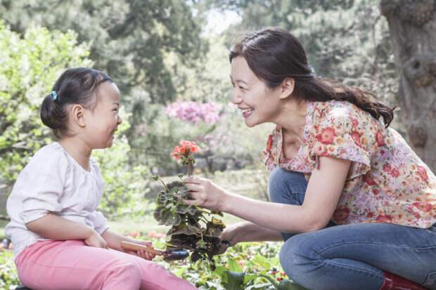 В Китае живые цветы выращивают, но не дарят