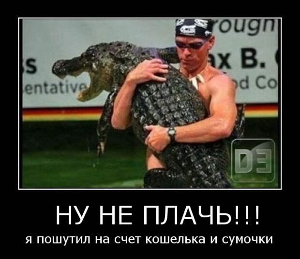 Смешные-демотиваторы-про-животных