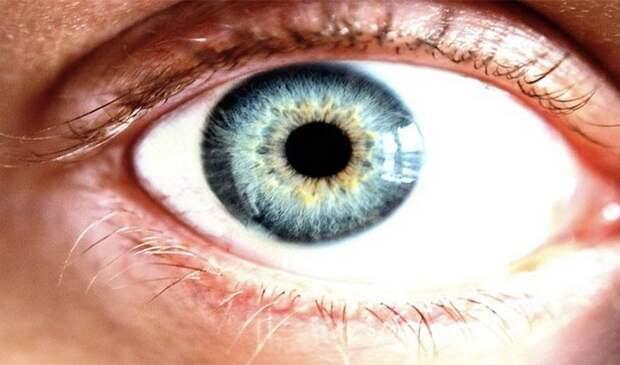 Роговица глаза.