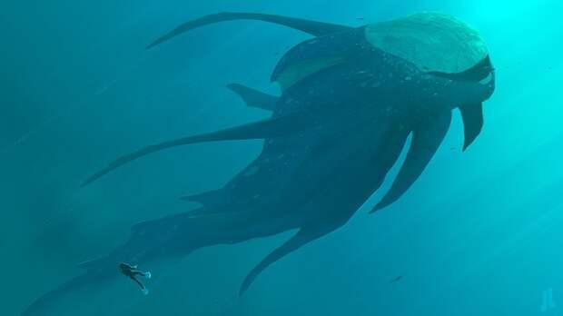 Огромное «паукообразное существо» запечатлела камера рядом с серфером (ВИДЕО)