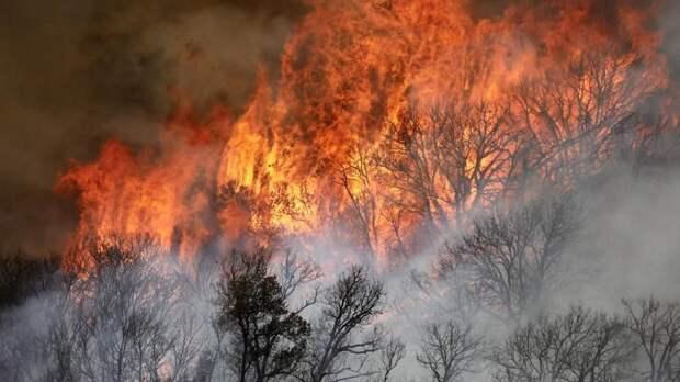 Крупнейший в истории штата пожар охватил Колорадо