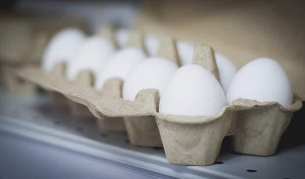 «Наконец-то дождались!» Омская птицефабрика заявила о выпуске яиц после эпидемии