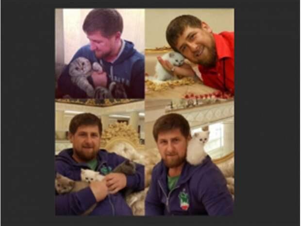 Европе нужен Кадыров