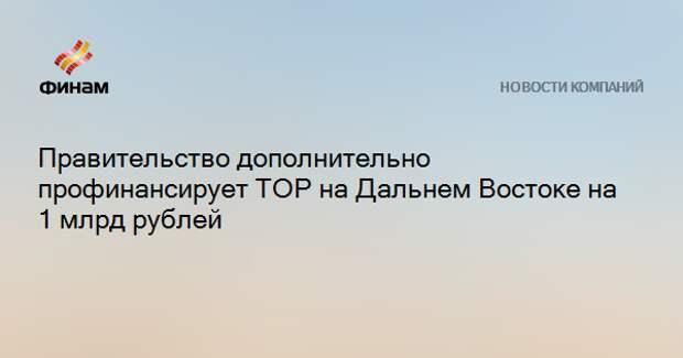 Правительство дополнительно профинансирует ТОР на Дальнем Востоке на 1 млрд рублей