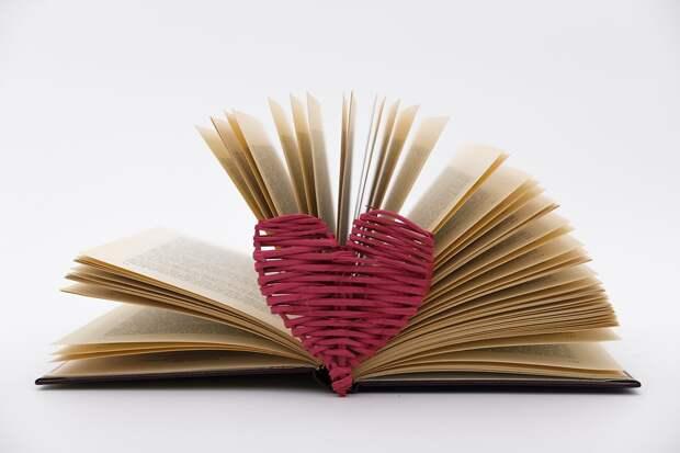 Библиотека на 6-й Северной линии присоединится к акции «Дарите книги с любовью» Фото с сайта pixabay.com