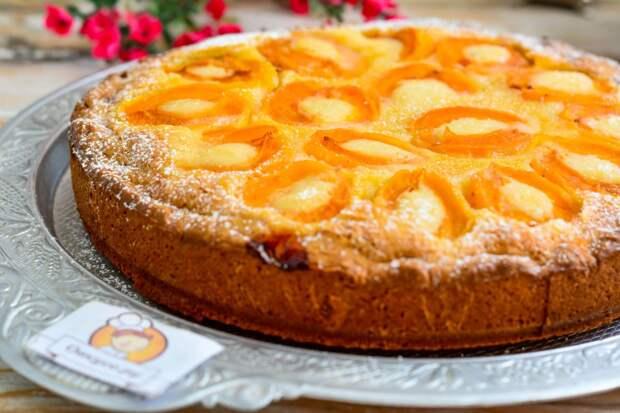 Пирог с абрикосами – вкусная выпечка к чаю.