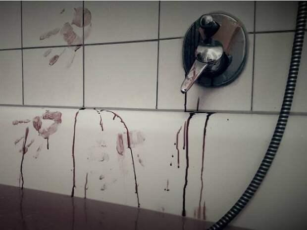В Ленобласти задержали мужчину по подозрению в убийстве бывшей супруги-врача