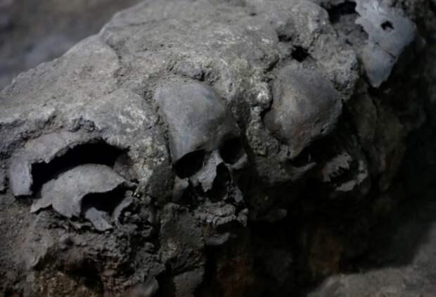 В Мехико обнаружили ацтекскую башню из человеческих черепов