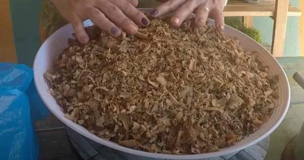 Как сделать горшки для растений из древесных опилок
