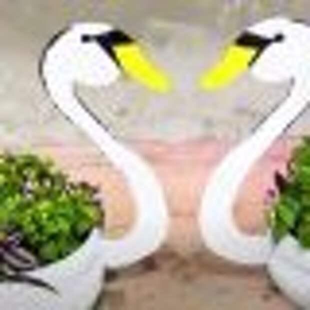 Когда покрышки вышли из моды, а лебедей на участке хочется — делаем вазоны для цветов из пластика