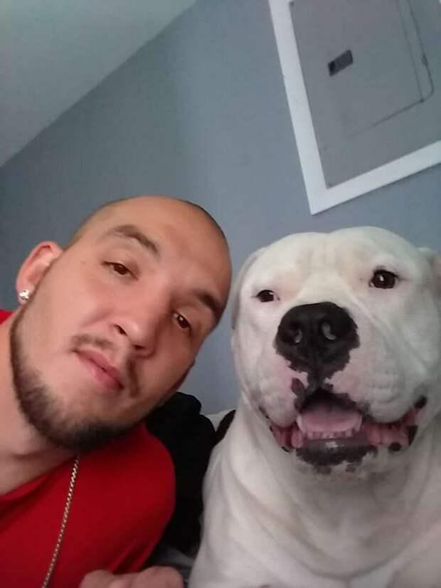 Ради того, чтобы спасти жизнь своей собаке, мужчина продал машну