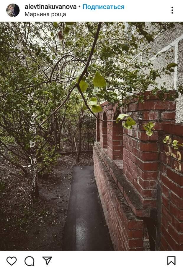 Фото дня: тайный замок в Марьиной роще