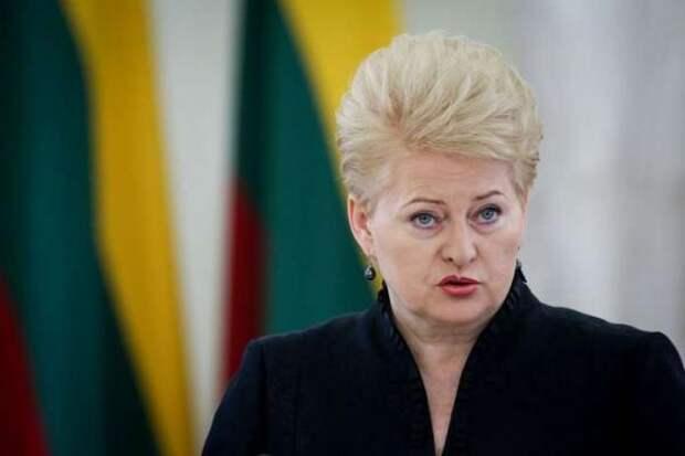 Громкий «проигрыш» Москве не остановил Литву: Вильнюс переходит к плану Б