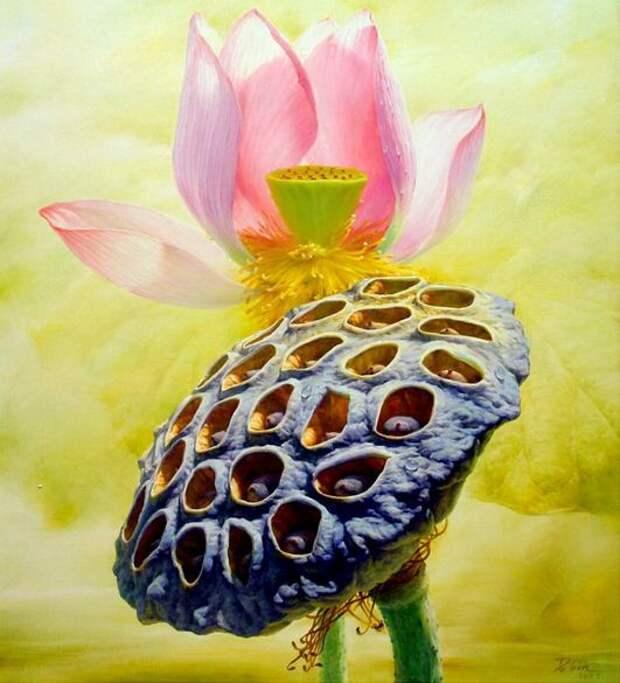 Jiang Debin. Цветы акварелью. Лотос первый