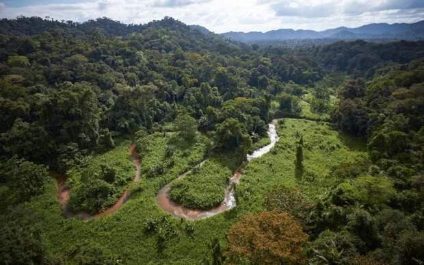 Затерянный мир в джунглях: как выглядит город обезьяньего Бога