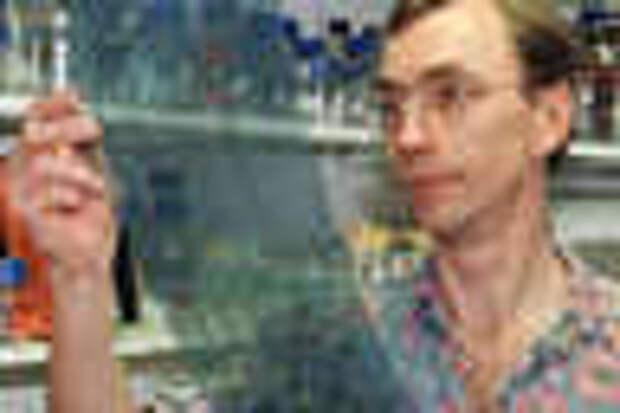 Сванте Паабо изучает расшифровку генома. Фото из личного архива автора