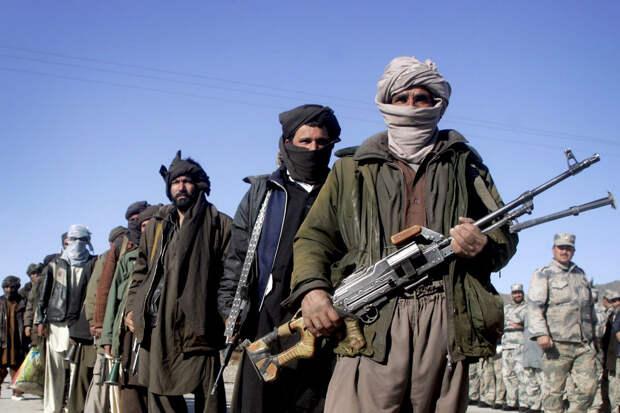 Талибы заявили, что не позволят использовать Афганистан для нападения на Россию