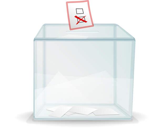 Эксперты ФоРГО об изменениях избирательной системы
