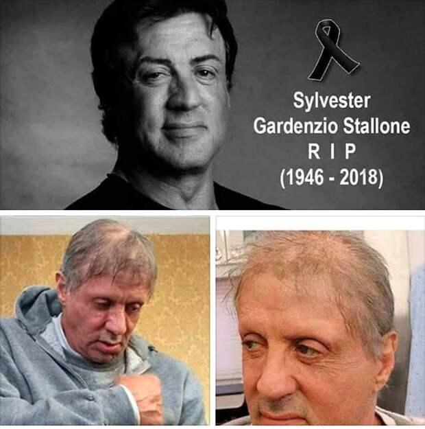 В Сети появилась информация о смерти Сильвестра Сталлоне