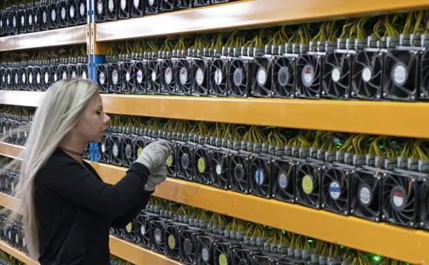 В Минфине предложили лишать свободы за недекларирование криптовалют