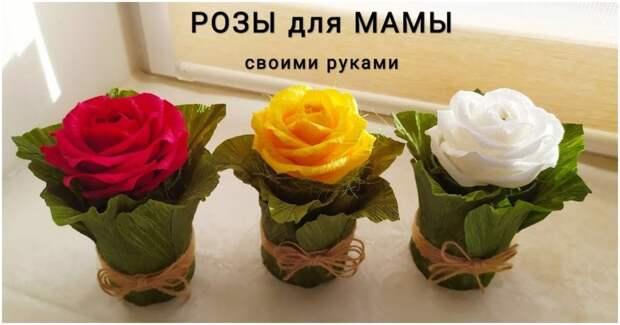 Для любимых женщин — лёгкий в повторении подарок с сюрпризом к 8 марта