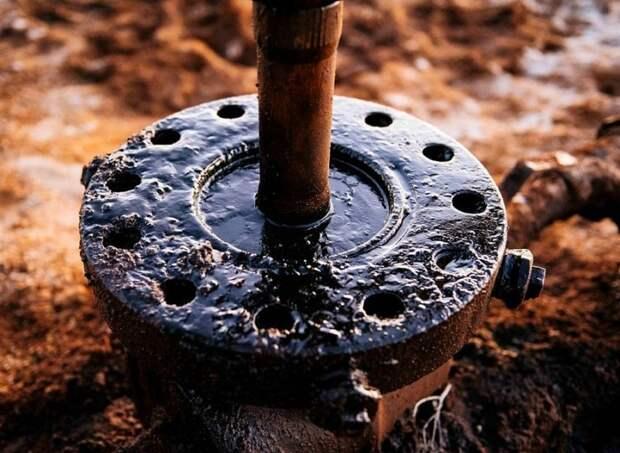 Около 3 млн тонн российской «грязной» нефти ушло по «Дружбе» за границу
