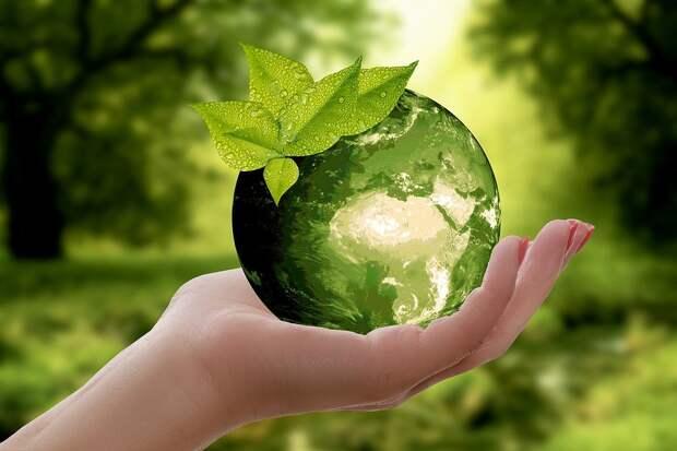 Участвуете ли вы в экологических и благотворительных акциях в Марьиной роще? – новый опрос жителей района
