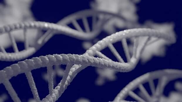 Коронавирус оказался способен встраиваться в ДНК человека